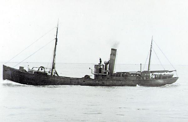 Swan II
